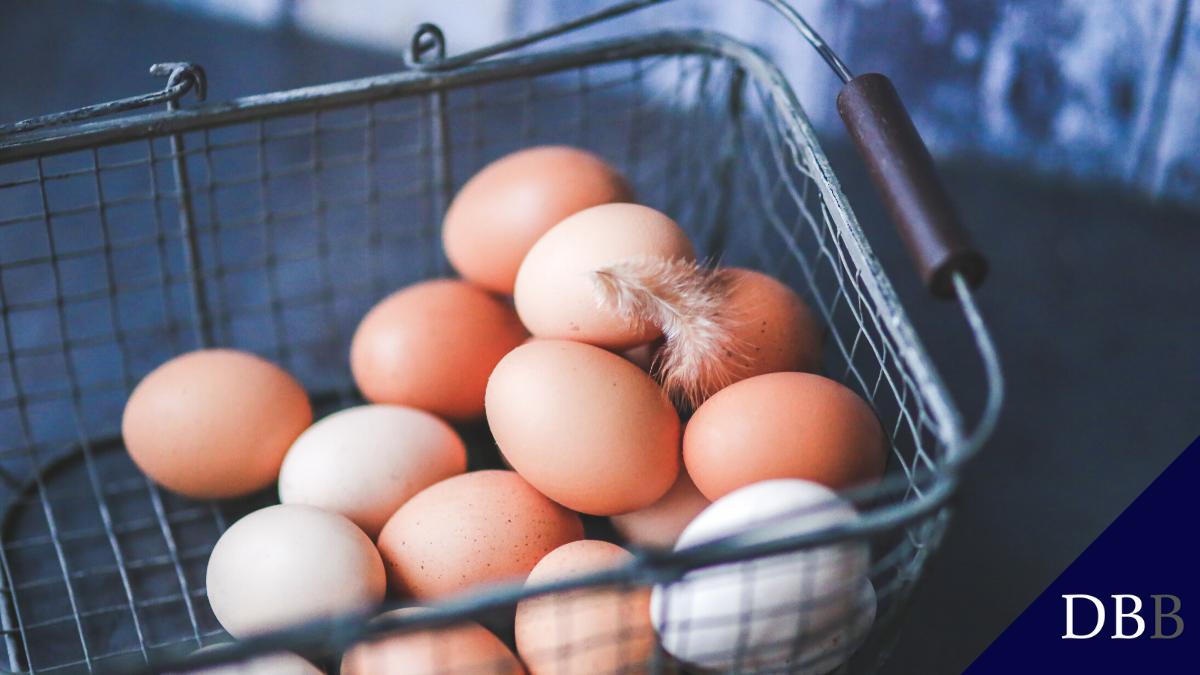 4 leg nooit al je eieren in één mand, diversifieer cover foot